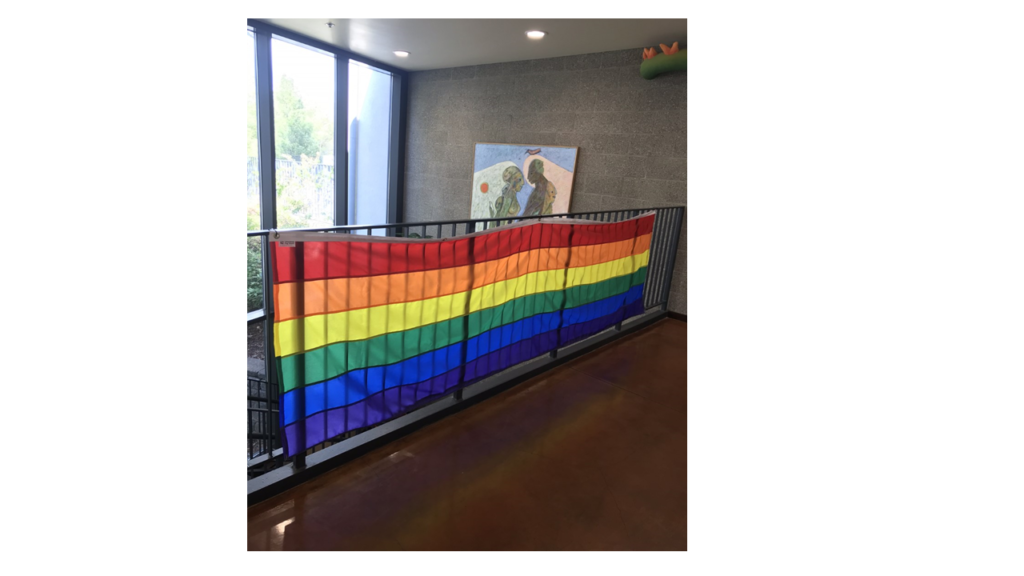 Pride flag hanging in the library
